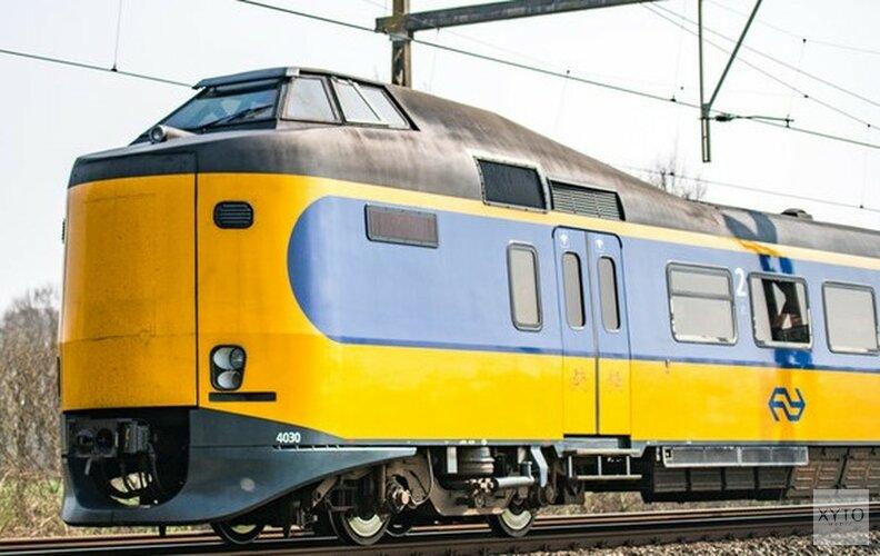 Vrees wordt werkelijkheid: damhert aangereden door trein