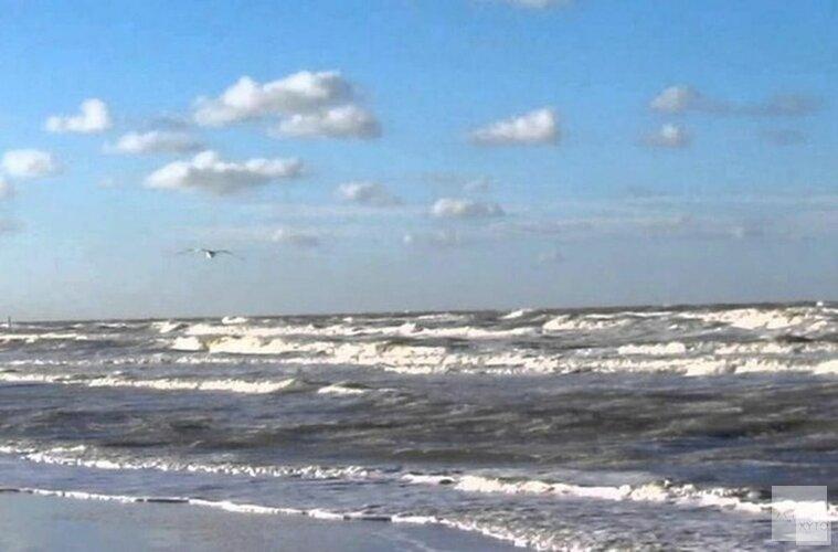 Ingrijpende veranderingen op de Noordzee door de groei van windparken vragen om meer onderzoek