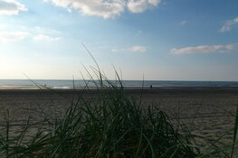 Ook meerderheid raad Zandvoort akkoord met 'F1-karavaan' over strand