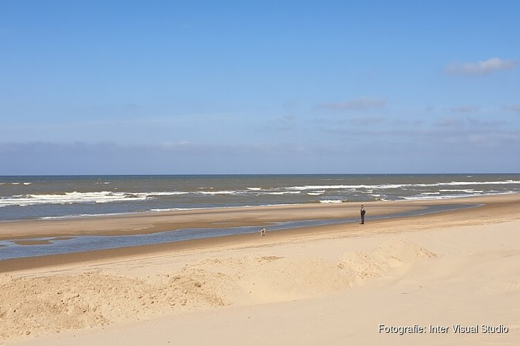 Wanneer mag je wel en wanneer niet met je hond of paard het strand op?